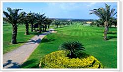 Golfer's Play in Highland & Beach
